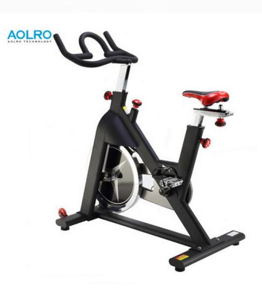 奥力龙高级竞赛健身车AL923