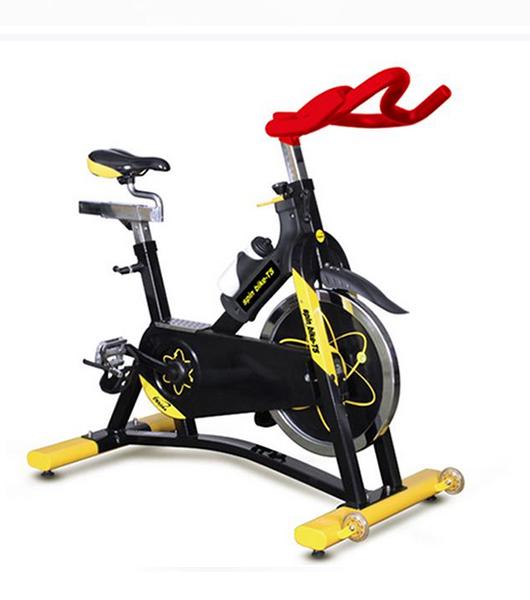 汇祥豪华商用健身车T5